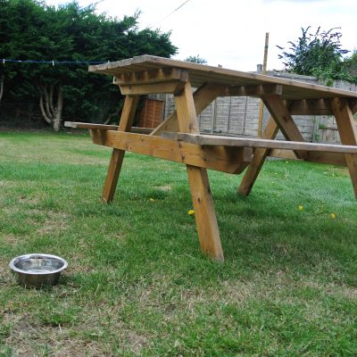 A few homely items for your dog are provided, along with a enclosed garden for them